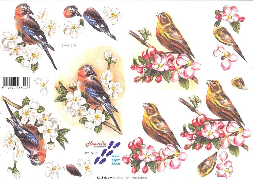 3d Decoupage Sheet Bird Passioncreationcollection