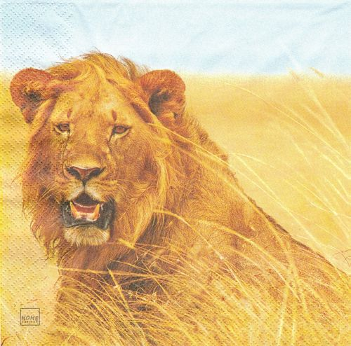 2 Serviettes papier Savane Lion