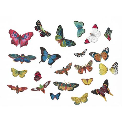 23 Iron-on patch Butterflies