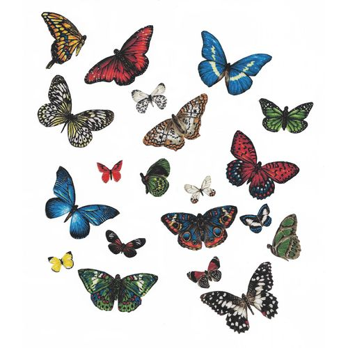 20 Iron-on patch Butterflies
