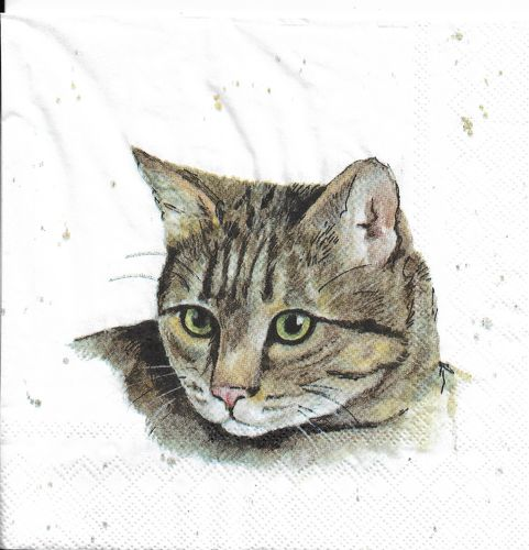 4 Paper Napkins Farmfriends Cat