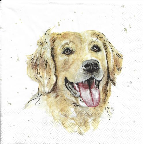 4 Serviettes papier Chien Golden Retriever