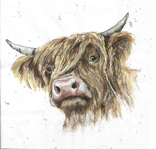 4 Paper Napkins Farmfriends Galloway