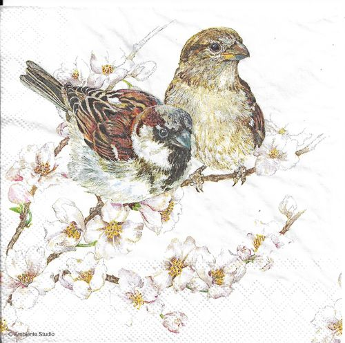 4 Paper Napkins Sparrows Blossom