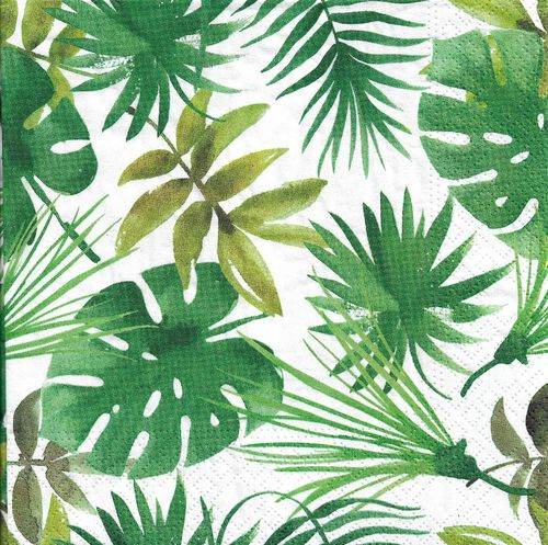 4 Paper Napkins Monstera