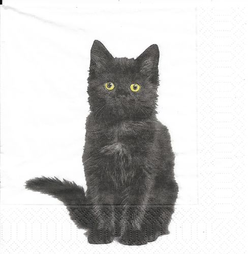 4 Paper Napkins Bio Black Cat
